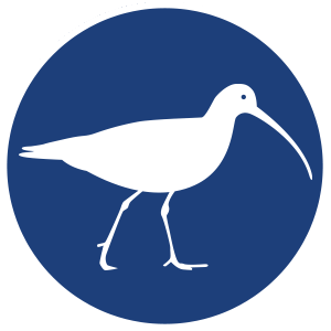 Bird Wise